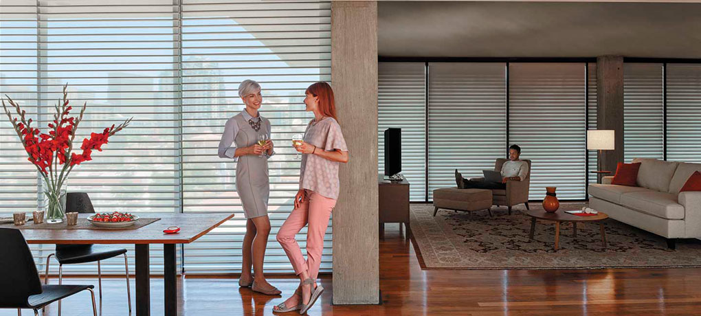 7-HUANES-Automated-Blinds---Blinds-Automation,-Cleaning-and-Repairs---window_whole-house_1440x650